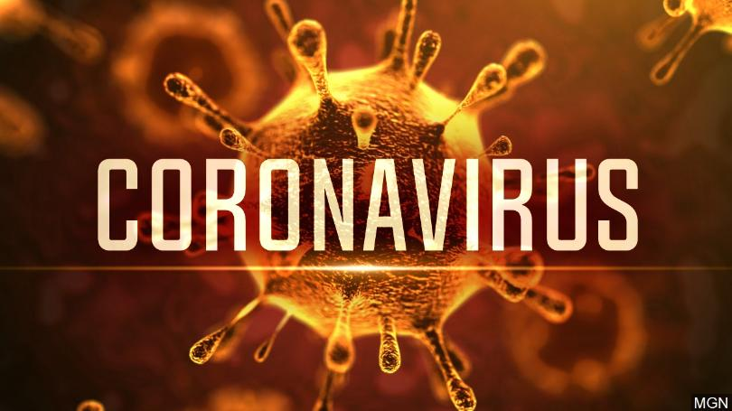 Coronavirus – we're importing, are we safe?